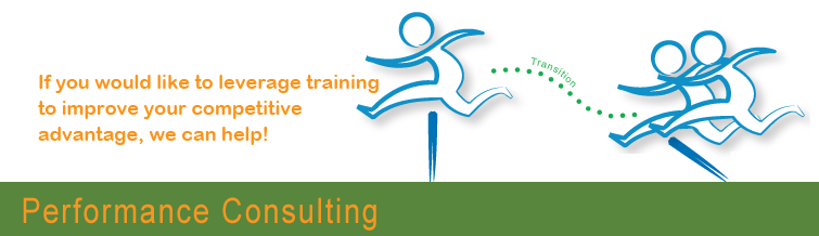 Performance Consulting Training